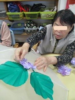 201905紫陽花工藤さんブログ用.jpg